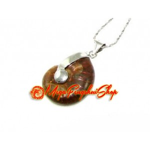 Ammonite Shell Pendant Necklace (S)