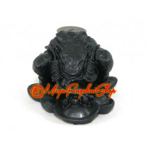 Black Three Legged Money Toad on Ingots