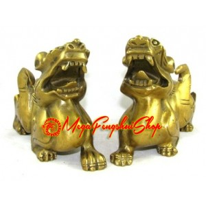 Brass Pair of Fengshui Pi Yao