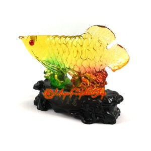Colorful Liuli Feng Shui Arowana for Wealth Luck