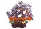Crystal Wishfulfilling Bonsai Tree with 9 Coins (Amethyst)