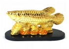 Feng Shui Arowana on Bed of Coins (S)