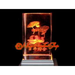 Laser Engraved Glass with LED Base (Mandarin Ducks)