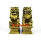 Pair of Feng Shui Fu Dogs for Protection
