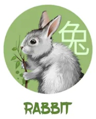 Feng Shui 2019 for Rabbit