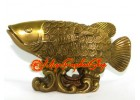 Brass Arowana with  Feng Shui Coin Scale