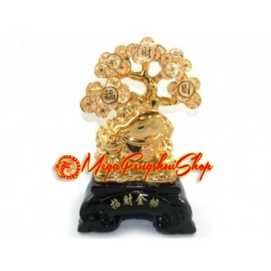Feng Shui Money Frog with Wealth-Granting Money Tree