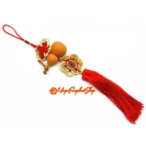 Natural Wu Lou with Eight Coins Feng Shui Tassel