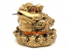 Supreme Wealth Inviting Money Frog with Eight Directional Toads