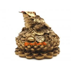 Wealth Inviting Money Frog on Lotus Flower